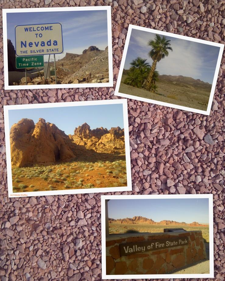 4 photos of the nevada desert by celeste sheffey for Mundial decor international nv