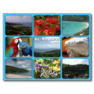 colorful photo collage of St. Martin by celeste@khoncepts.com