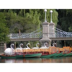 Boston Swan Boats Magnet sold in Massachsuetts