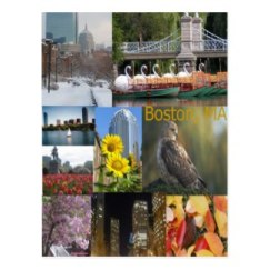 Boston Photo Collage Postcard (3)